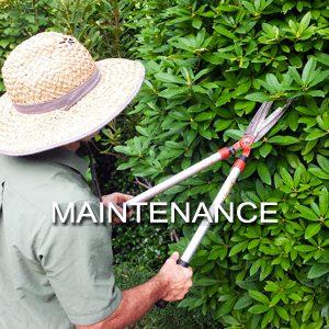 Maintenance-1